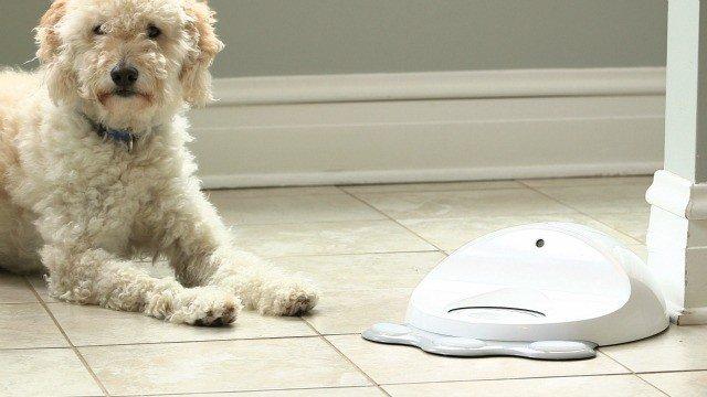 Este es Cleverpet, un juguete interactivo para mascotas