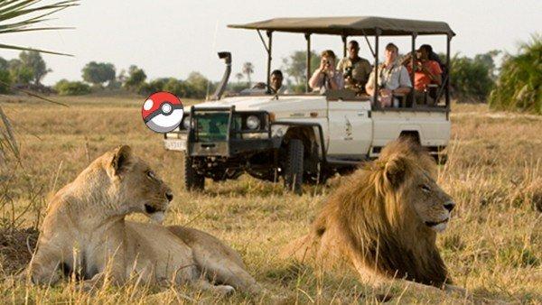 Pokémon GO: Una agencia de viajes propone ir de safari