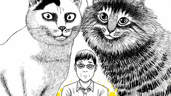 No Solo Gaming: Hablamos del manga El diario gatuno de Junji Ito: Yon y Mû