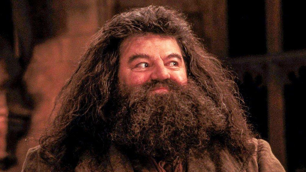 Cuatro cuestiones pendientes sobre Harry Potter