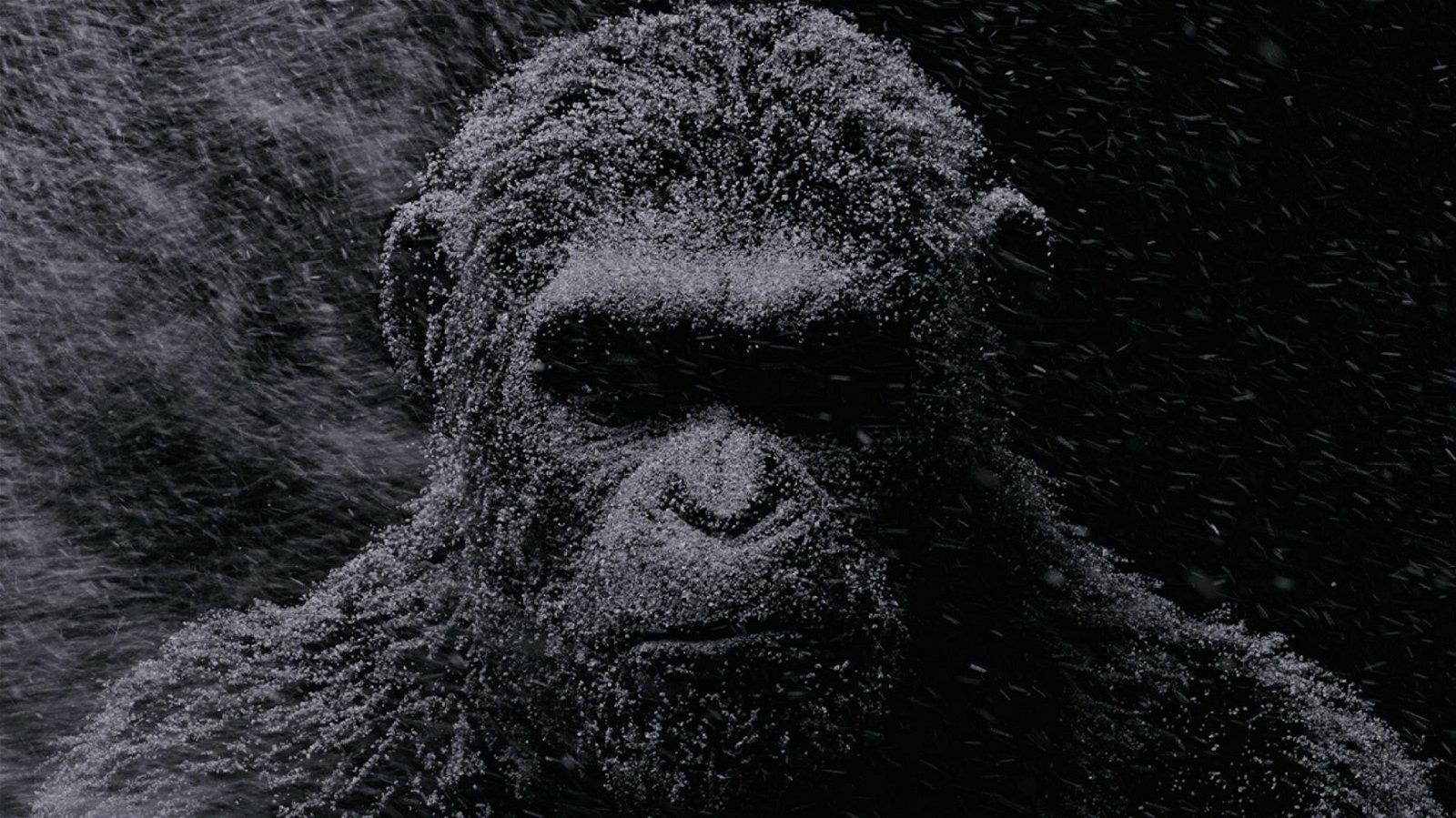 La Guerra del Planeta de los Simios revela un nuevo tráiler