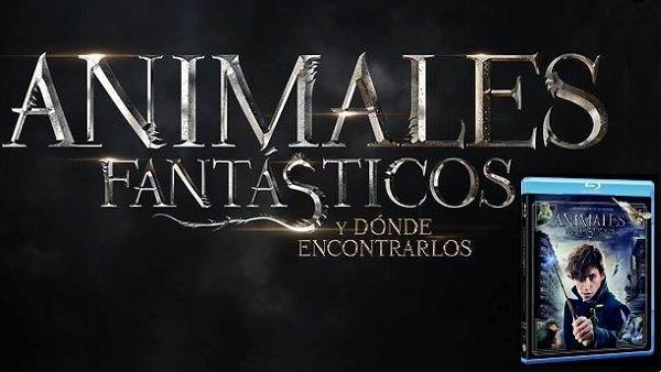 Animales Fantásticos y Dónde Encontrarlos: Análisis de la edición en Blu-ray