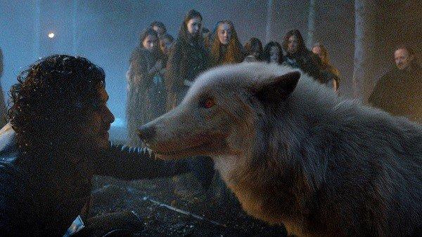 Juego de Tronos: Muere Fantasma, el lobo que George R.R. Martin adoptó en honor a la saga