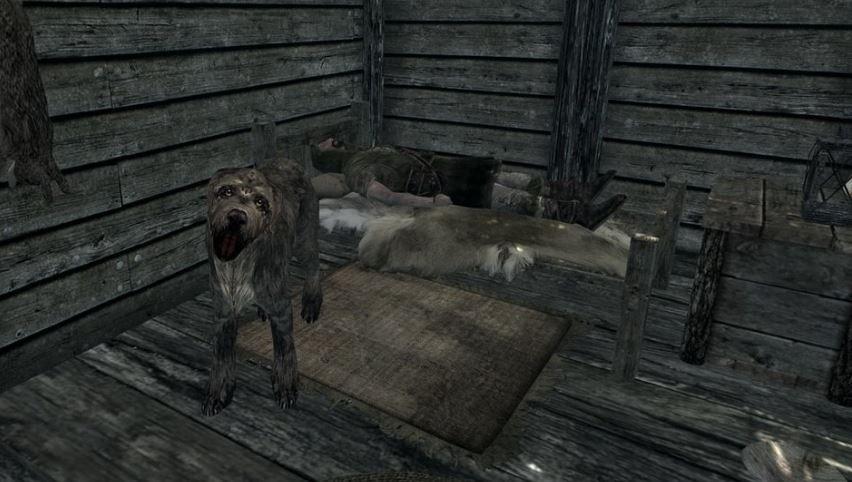 Skyrim tiene un perro con una dramática historia